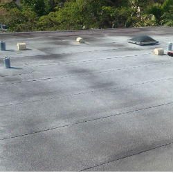 flat roof leak repair Fellsmere Florida 32948