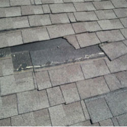 roof repair contractor  Virginia