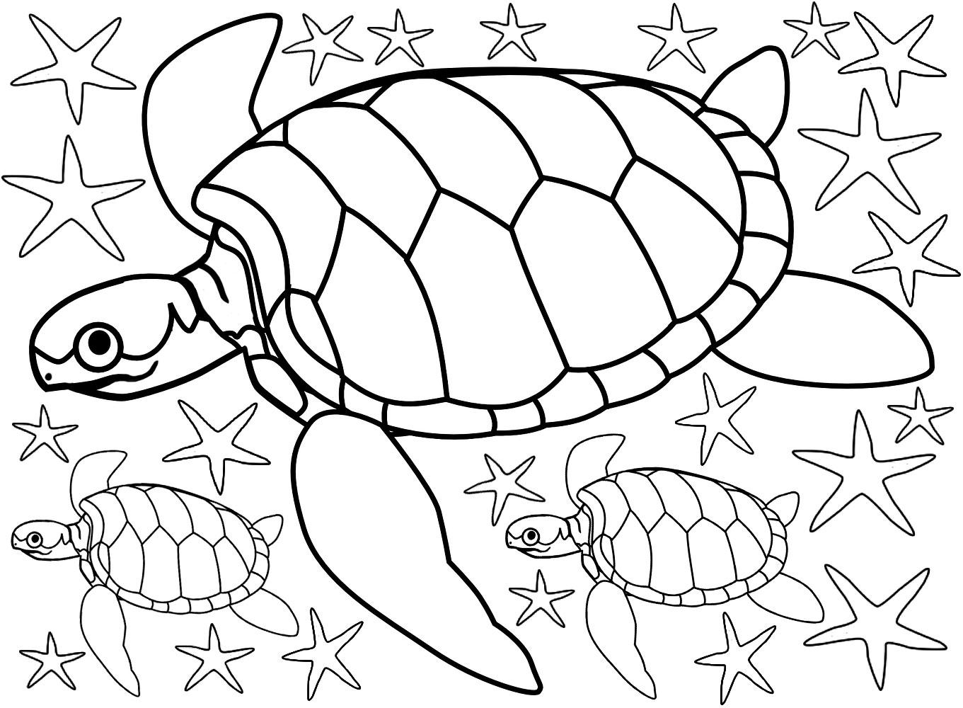Beach Colouring Turtles And Starfish