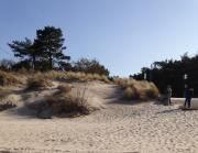 Strand 5