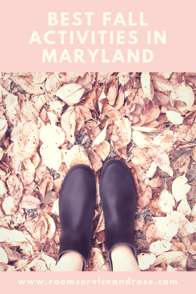Best Fall Activities in Maryland Pin Lacy Transeau