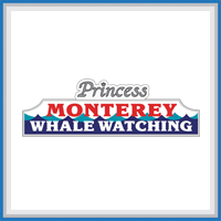 Princes_Whale_Watching
