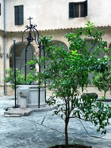 Palma Cathedral courtyard Roomy Home Palma Instatour
