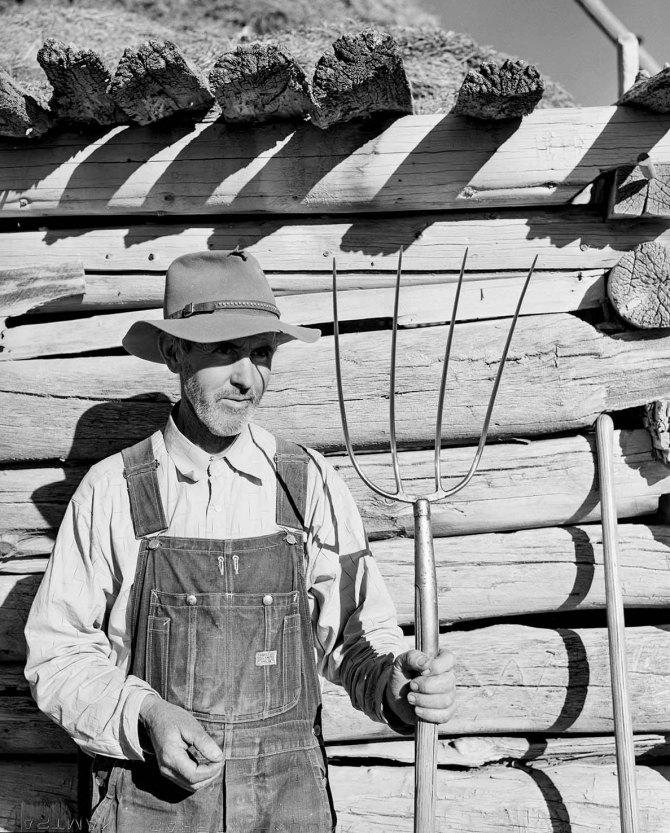 Tom Reilly, FSA rehabilitation client on his farm near Hotchkiss, Colorado. 1939.