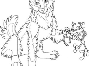 smiling wolf coloring page