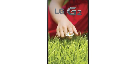 LGD805