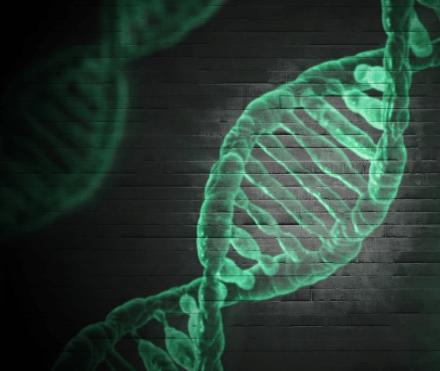 DNA Tools