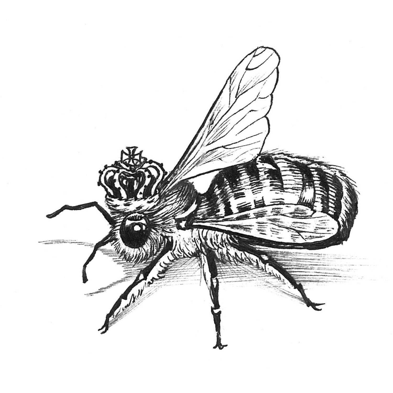 Queen Bee Intricate Ink Print