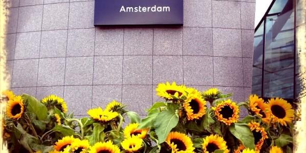van_gogh_museum_amsterdam_zonnebloemen