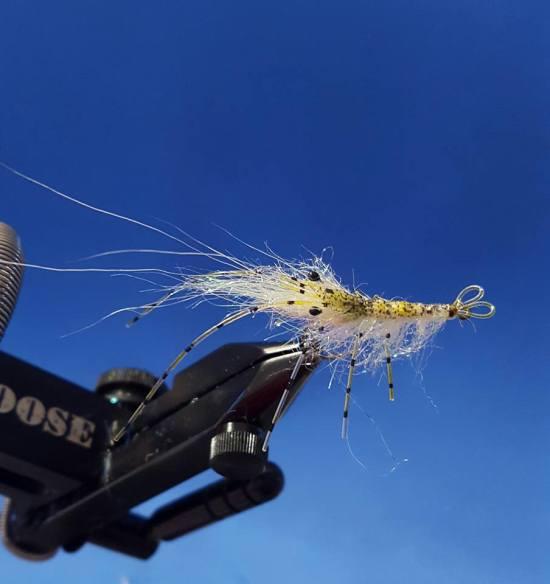 Sjøørret flue Leo shrimp
