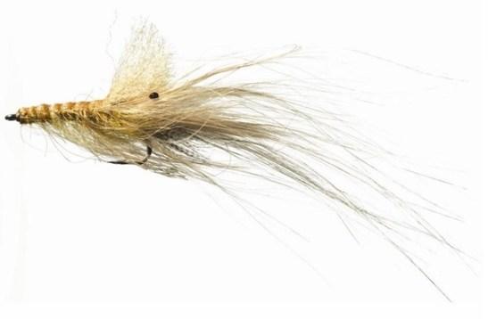 Pattergrisen er en fantastisk god sjøørretflue. Du kan egentlig klare deg med kun denne i flueboksen.