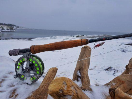 Skal du fiske sjøørret om våren må du forvente mange kast mellom hver sjøørret.
