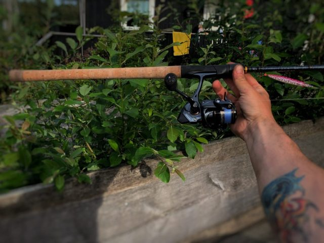 Rosareke tester fiskestang til sjøørret. Savage Gear Parabellum CCS er etter min mening en veldig god stang.