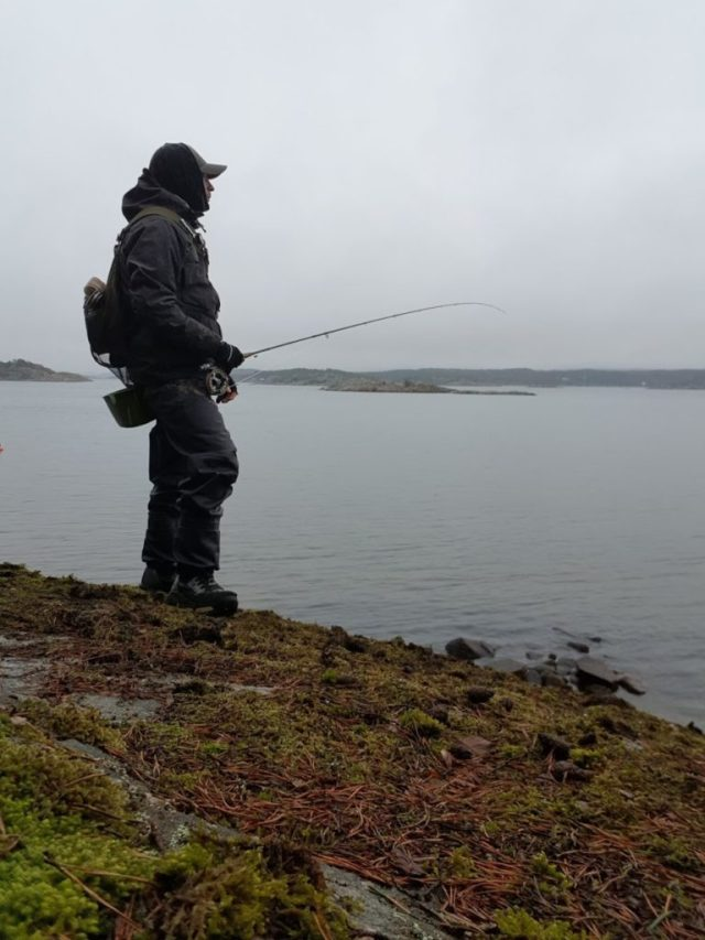 leter etter sjøørret på Hvaler. Bjørn Tore Kjølholt,rosareke.