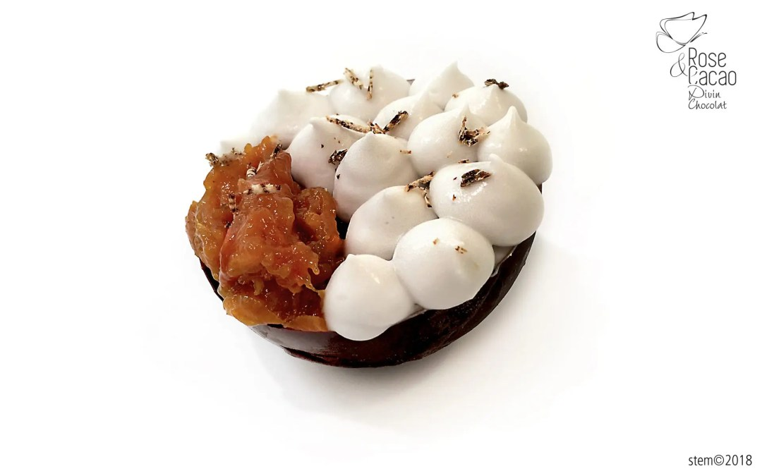 Compotée crue d'abricots, chantilly coco vegan, coque en chocolat cru