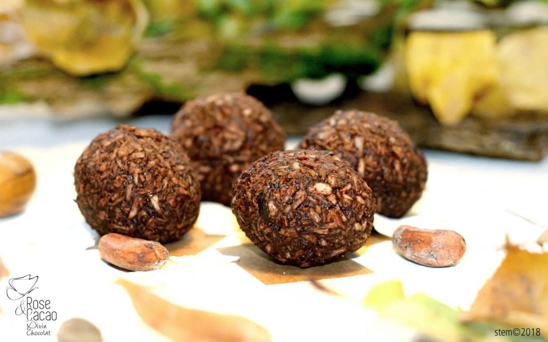 Boules de Noël coco chocolat