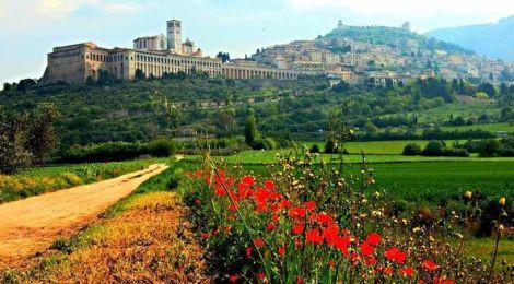 """ROSEA & WORLD AGORA' Umbria  (ITALY) "" - ROSALBA SELLA"
