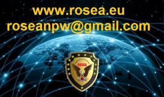 Роза тонированные глобус логотипа надписи 2