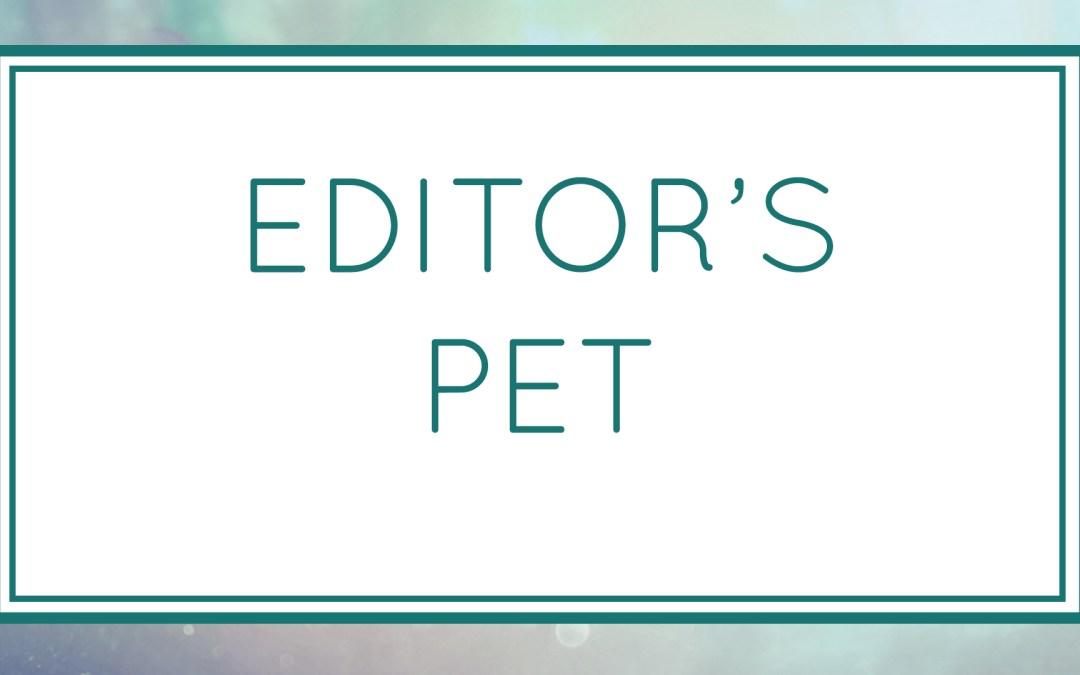 Editor's Pet (Workshop)