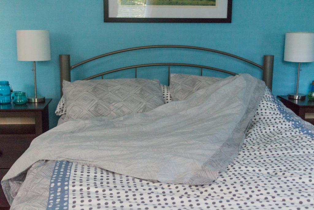 Guest Bedroom July 2016-16