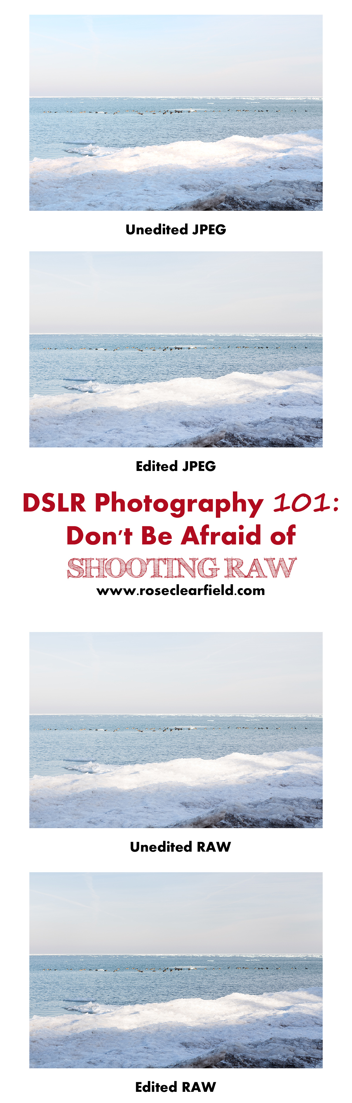DSLR Photography 101: Don't Be Afraid of Shooting RAW | http://www.roseclearfield.com