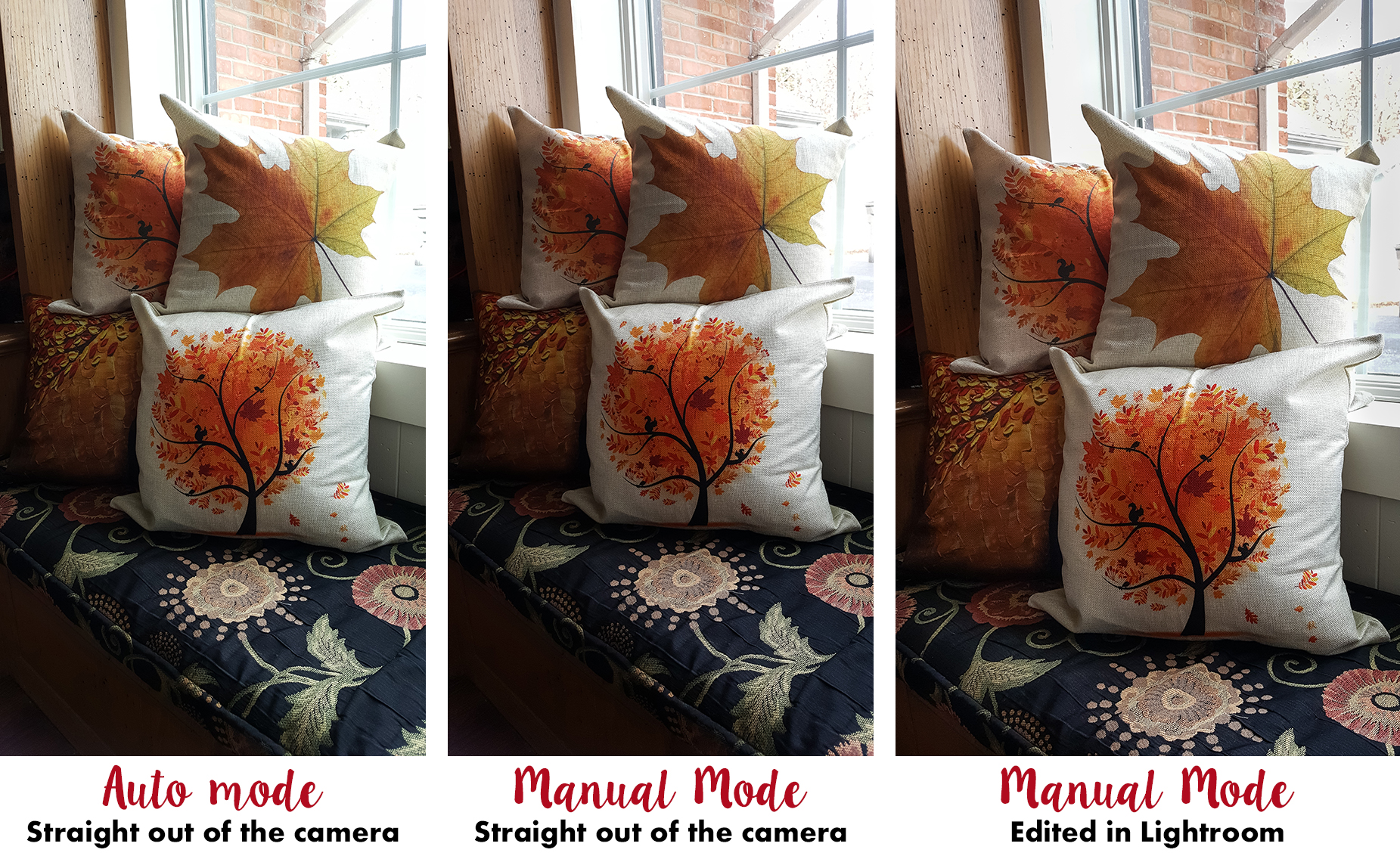 How to Take Better Photos for Your Blog With Your Phone - Auto mode vs. manual mode.   http://www.roseclearfield.com