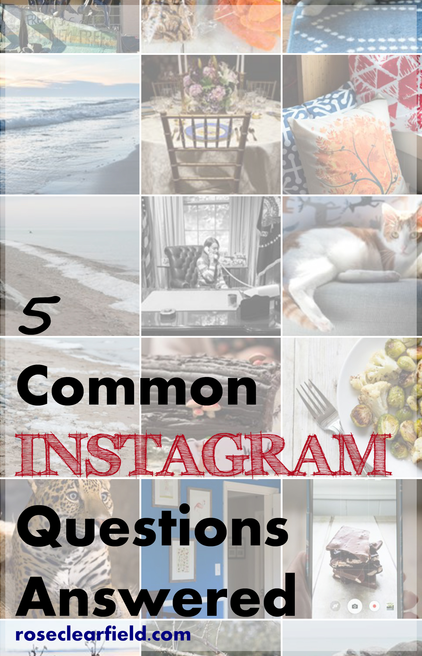 5 Common Instagram Questions Answered | http://www.roseclearfield.com
