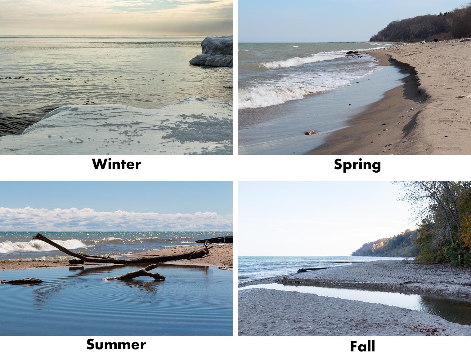 Beach in Four Seasons   http://www.roseclearfield.com