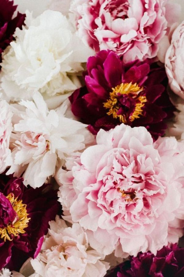 Spring Inspiration 4 | http://www.roseclearfield.com