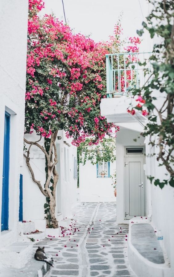 Spring Inspiration 8 | http://www.roseclearfield.com