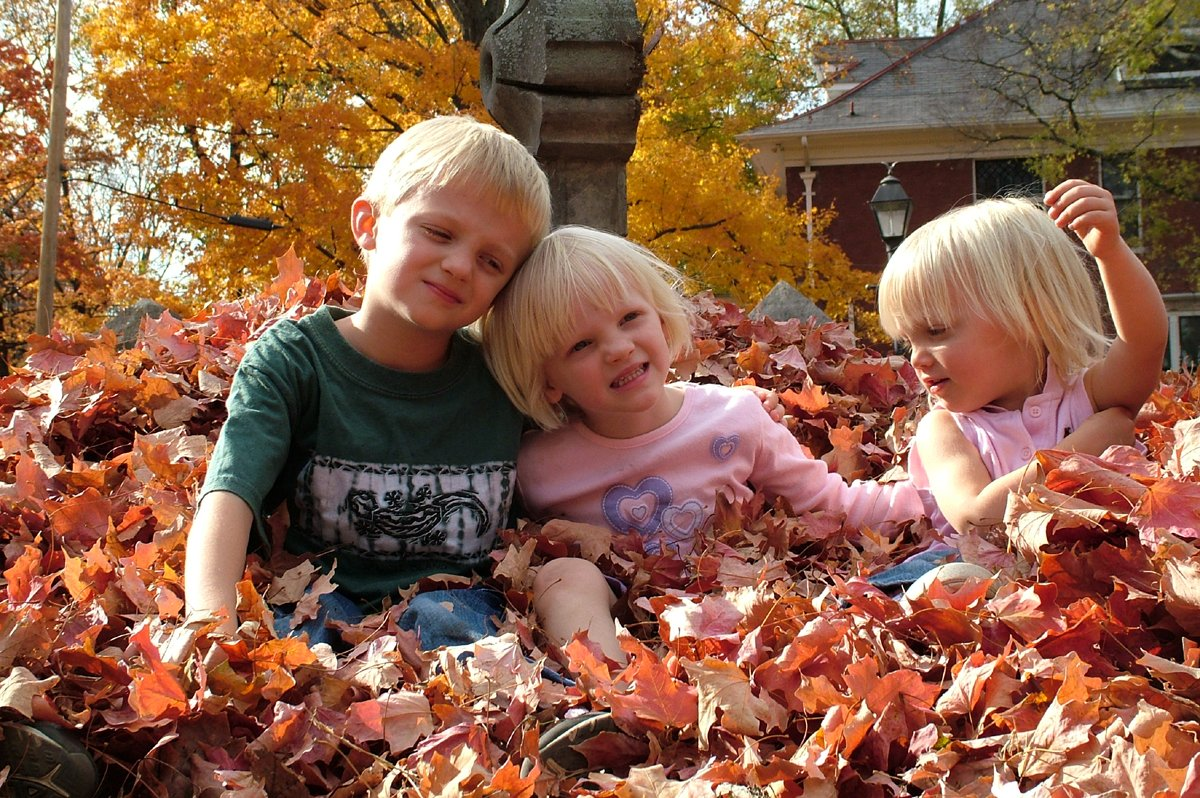 20 Creative Fall Photography Ideas - Family Fall Photos in the Leaves by Ned Horton via FreeImages | http://www.roseclearfield.com