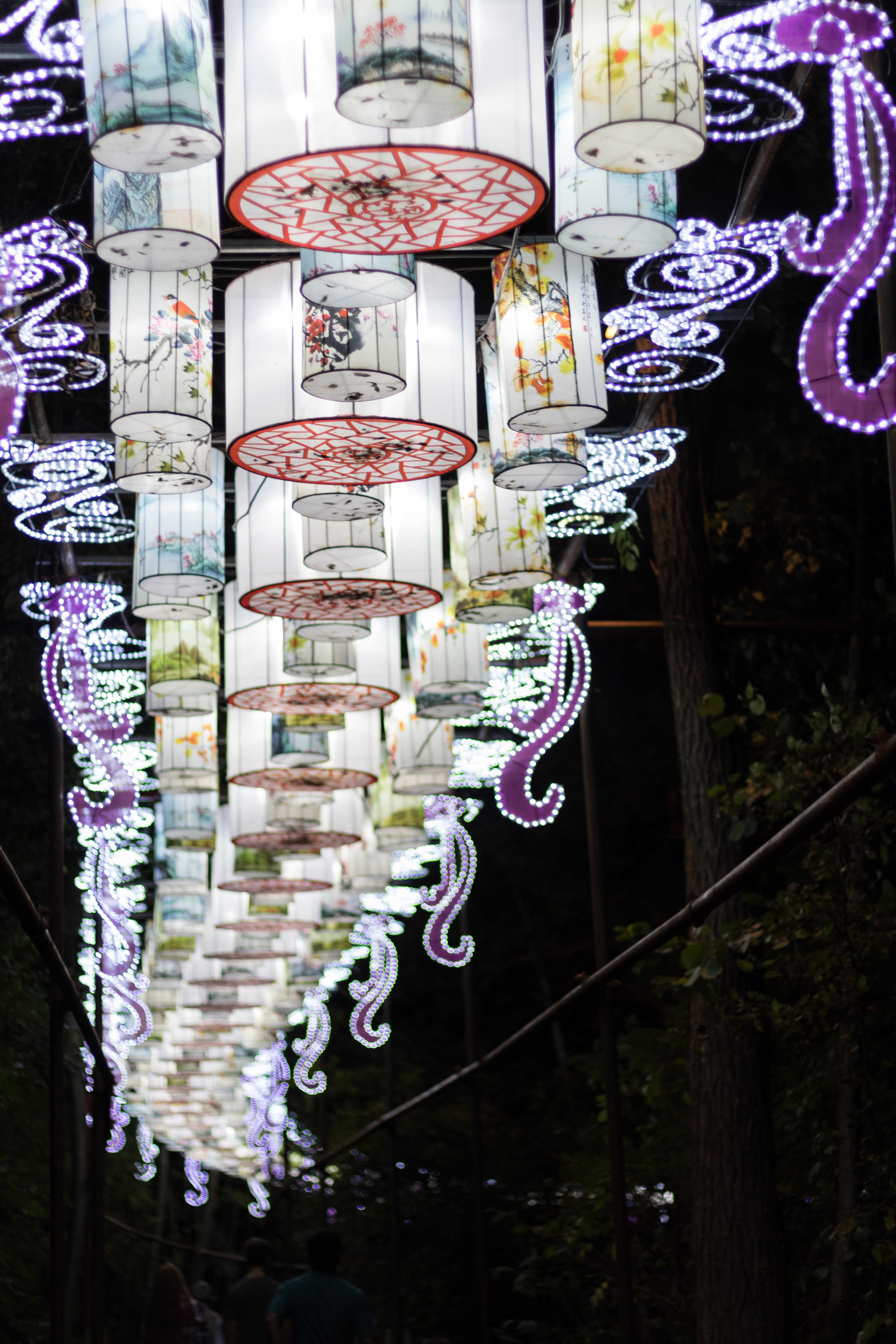 China Lights 2018, Boerner Botanical Gardens, Wisconsin | http://www.roseclearfield.com