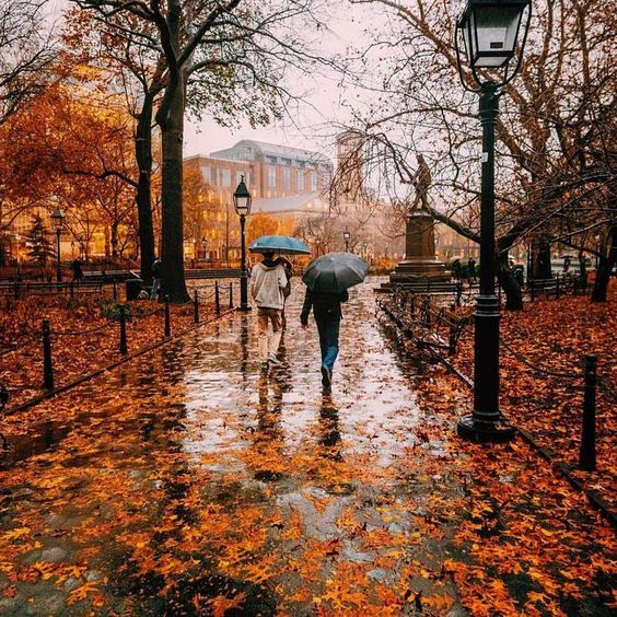 Fall Photo Inspiration - Fall in New York City by Zachasato on Instagram | https://www.roseclearfield.com