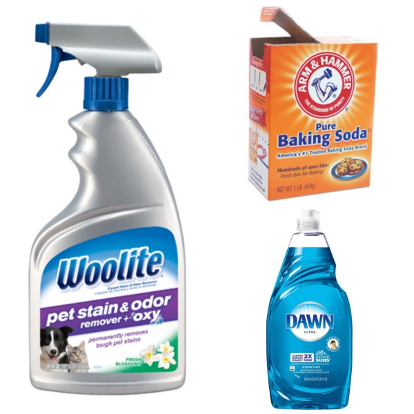 An alternative pet stain/odor remover-baking soda and Dawn