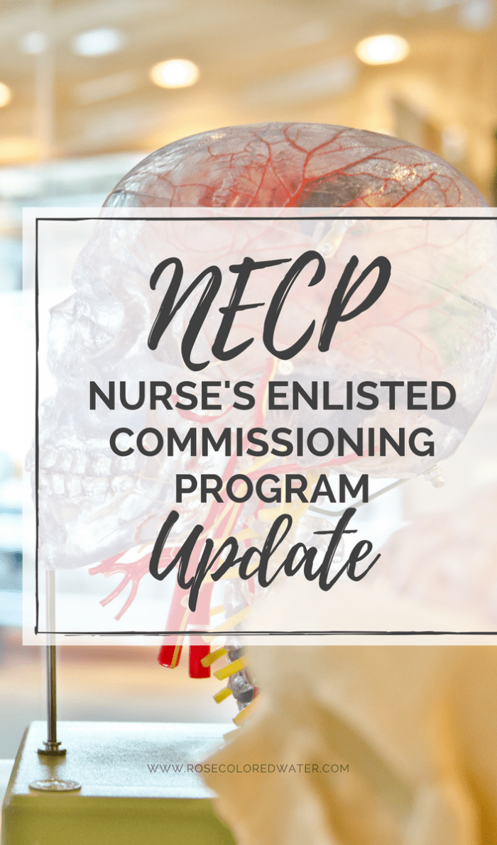 Nurses Enlisted Commissioning Program | Air Force | Rose Colored Water #airforce #military