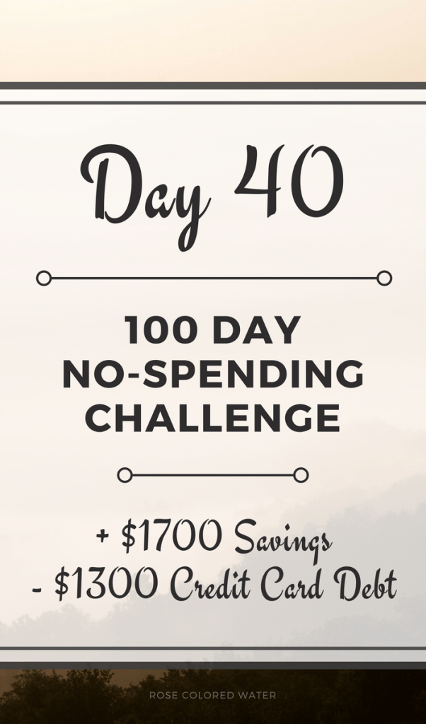40 Days In | No Spending Challenge | Rose Colored Water #money #savings #goals