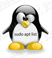 apt get list installed packages