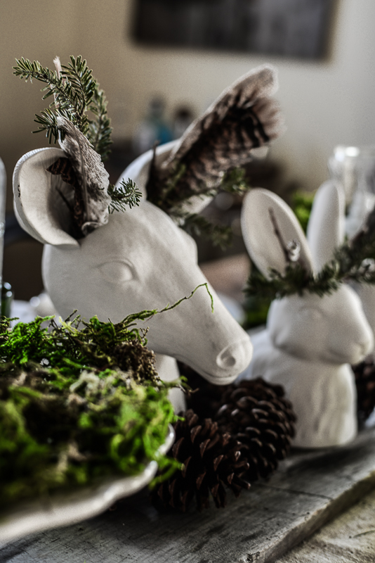 Rosemary & Thyme eBay-12