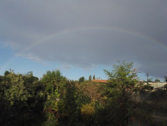 A rainbow graces the garden
