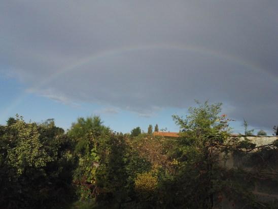 A rainbow graces the garden