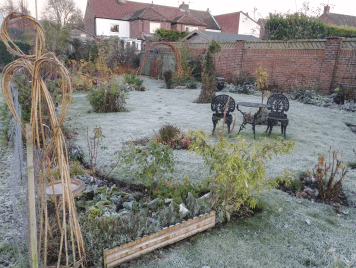 A frosty morning in Hook, you can almost hear the plants shivering...
