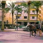 a horse drawn caleche in Tripoli, Libya 1962
