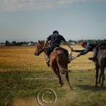 Kazakhstan: riders tussle over dead sheep in game of Kokpar or buzhkazi