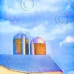 silo and barn, Maryland dairy farm