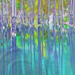 birch trees stand in emerald green water of Kaindy Lake in Kazakhstan