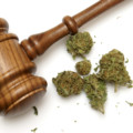 What You Need To Know Right Now About Legal Marijuana in New Jersey