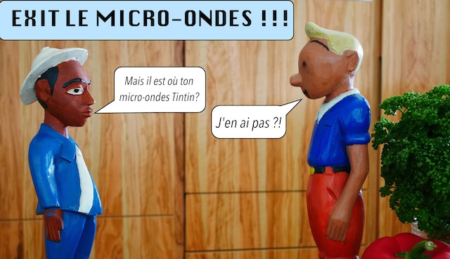 Exit le Micro-Ondes !!!