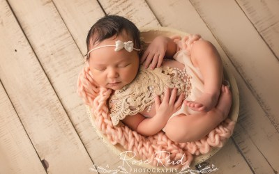 Baby's First Infant Massage by Rebecca Hallman