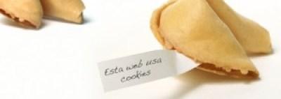 Cookies en Internet