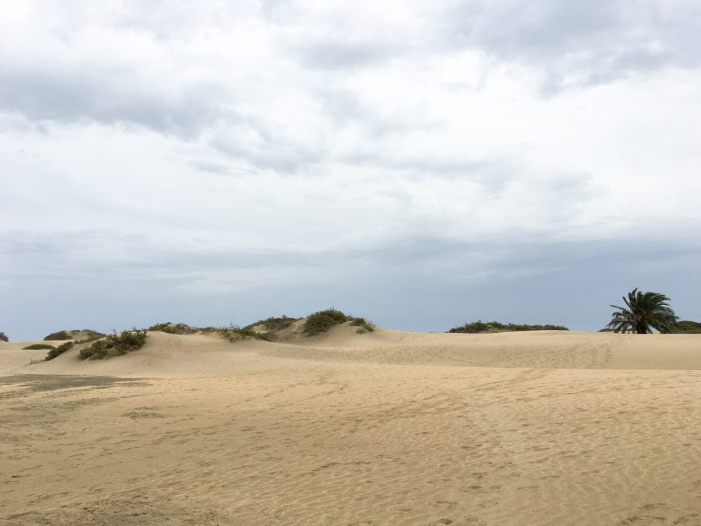 view_to_Maspalomas_dunes